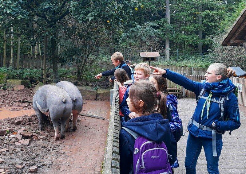 Wildparkbesuch der Sippe Burgunder