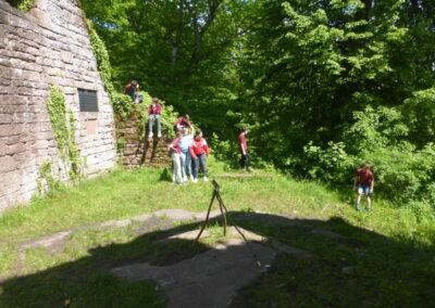 Odenwaldwanderung Mai21 4