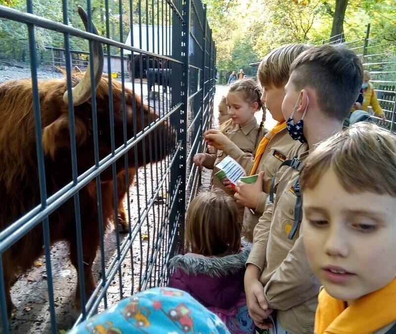 Ausflug in den Wildpark